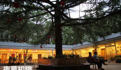 北京市朝阳区寸草春晖养老护理院