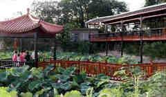 上海市黄浦区荷花池敬老院