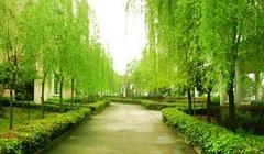 重庆市江津区耀文老年公寓