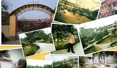 河南省洛阳市偃师市夕阳红托老院(养老公寓)